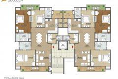 floor6-sushma